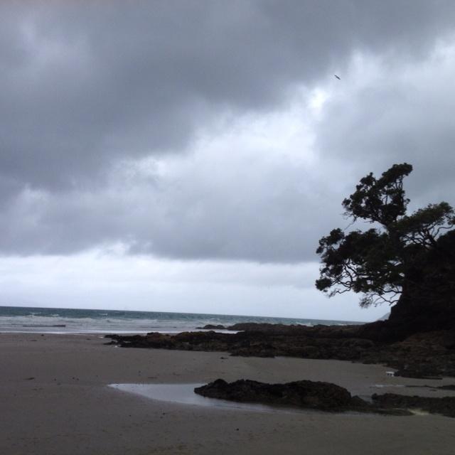 Waipu Cove #flybuysnz
