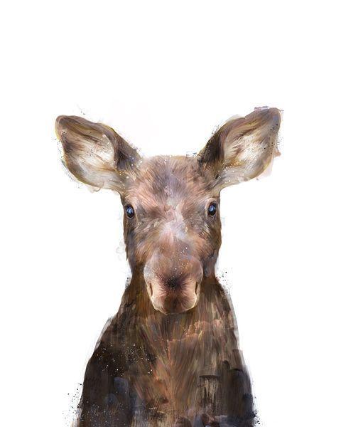 Little Moose Art Print by Amy Hamilton   Society6