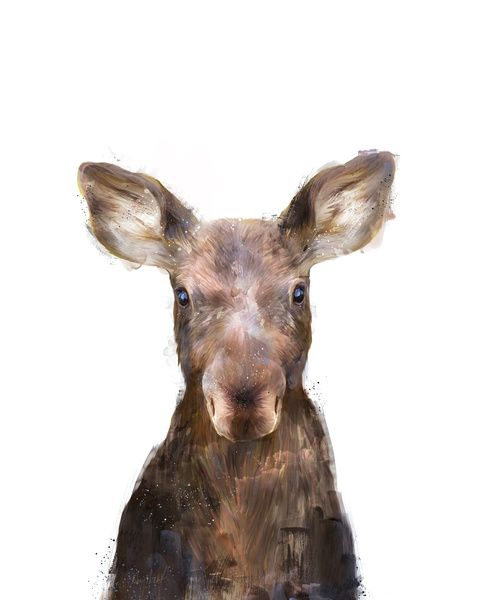 Little Moose Art Print by Amy Hamilton | Society6