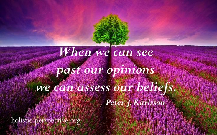 Theory of Holistic Perspective | Opinions and beliefs