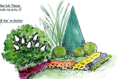 Miniaturowy ogródek - strona 58 - Forum ogrodnicze - Ogrodowisko