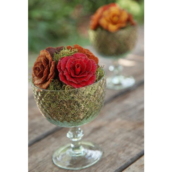 taça natureza | Adriana Carioba found on Polyvore