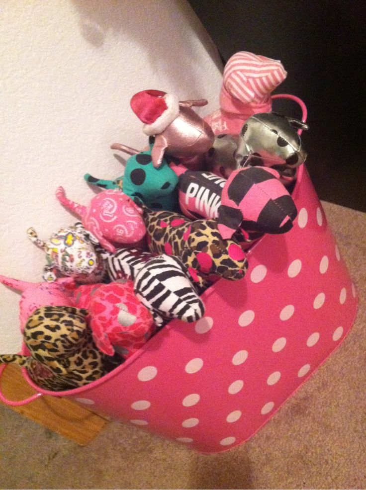 another cute idea for your vs pink dogs