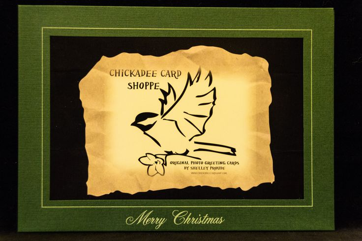 Merry Christmas Frame.  Choose a photo from the Chickadee Card Shoppe Christmas board to be paired with this frame.