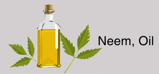 23 Amazing Benefits Of Neem Oil For Skin And Hair