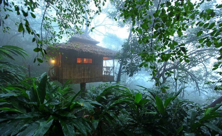 Thekkady,Thekkady Hotels,Thekkady Resorts,Accommodation, Kerala : Greenwoods.in