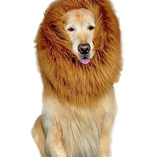 High Maintenance Dog Lion Mane Costume,Lion Mane for Dog and Big Dog Lion Mane Wigs Fancy D