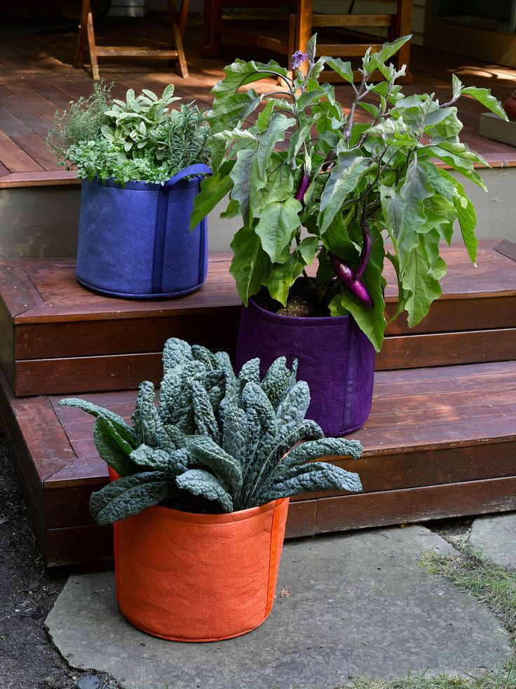 Stackable Herb Planter: Cascada Self-Watering | Gardeners.com
