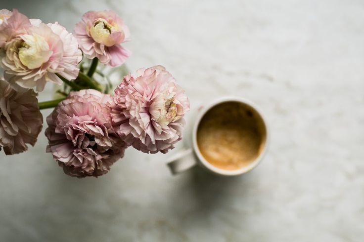 Büyüleyici ve Yaratıcı Natürmort Fotoğrafçılığı - Bir Çentik Tıklayın