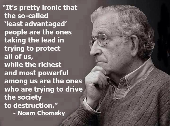 Noam Chomsky Quotes 62 Best Noam Chomsky Images On Pinterest  Noam Chomsky Politics .