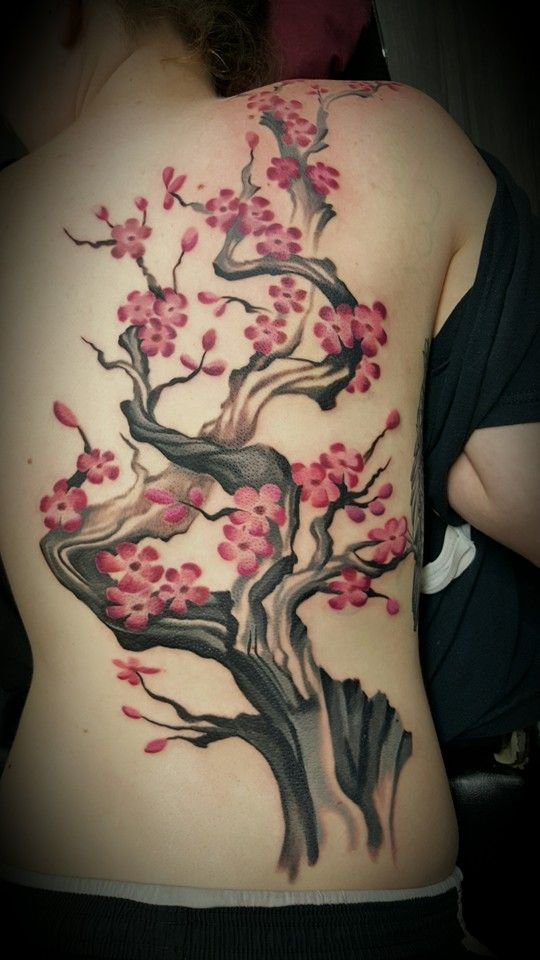cherry blossoms, cherry blossoms tattoo, female back tattoos, back tattoos, watercolor, watercolor tattoo, tattoo by freddy payne, Freddy Payne