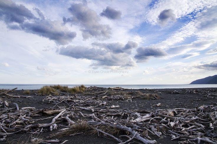 Ocean Beach, Wairarapa   © Elyse Childs Photography