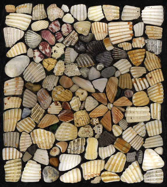 It would be awesome to have a walkway lined with shells with a focal point of mosaics along the path.. Dreams :)