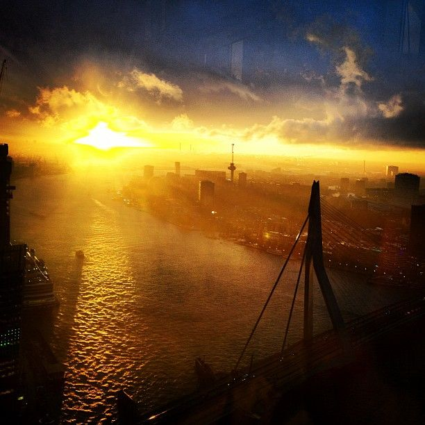 Photo by timbox111 on instagram / rotterdam skyline