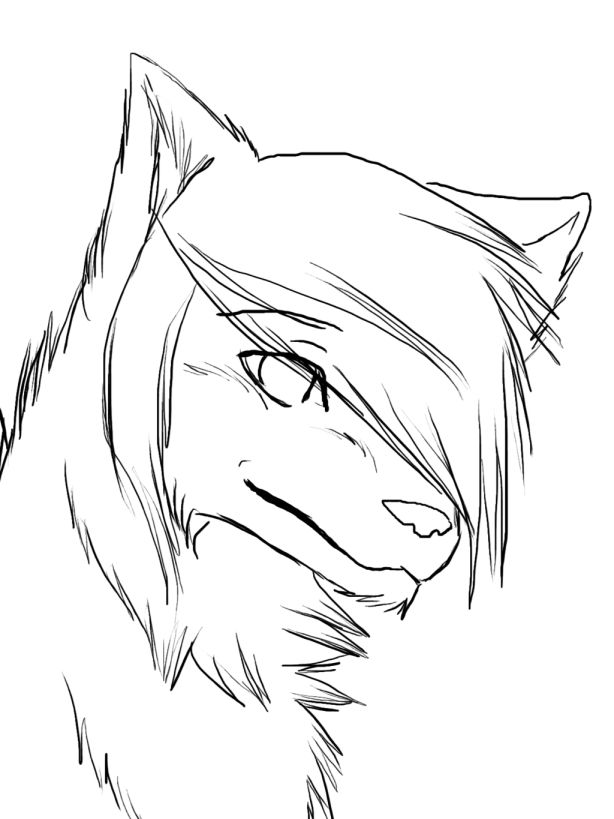 18 Drawing Anime Wolves Wolf Drawing Easy Wolf Drawing Anime Wolf Drawing