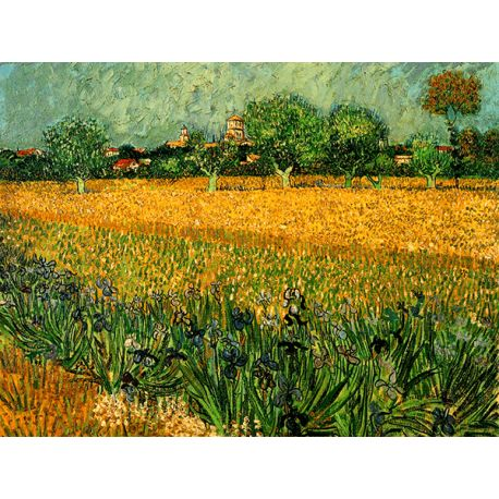 Reprodukcje obrazów Vincent van Gogh View of arles with irises in the foreground - Fedkolor