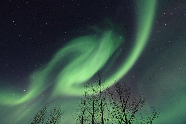 Northern Lights by Reykjavik