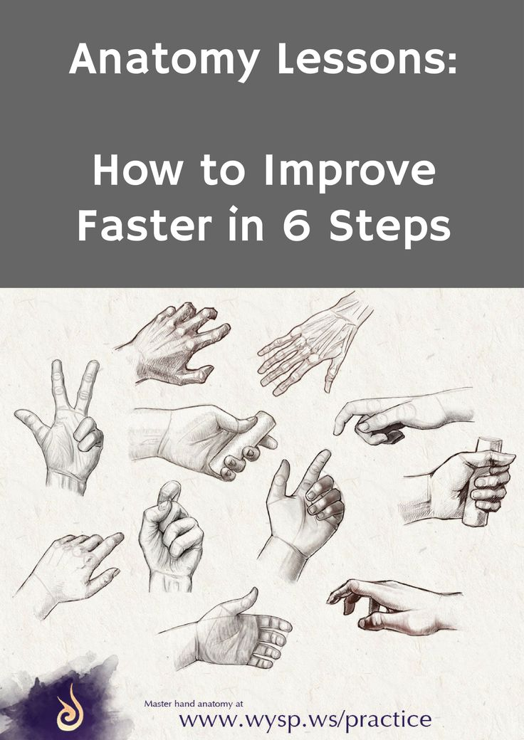 Anatomy Lessons How to Improve Faster in 6 Steps drawing