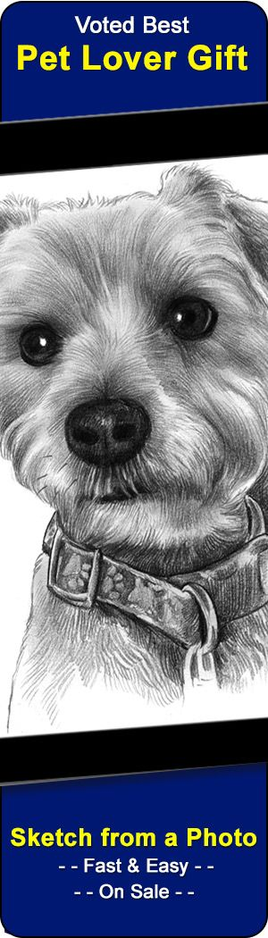 We drawn/paint portraits of pets from your photo.  Awesome gift for dog lovers and a popular pet memorial too.