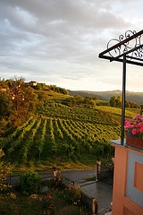 View from Villa I Due Padroni