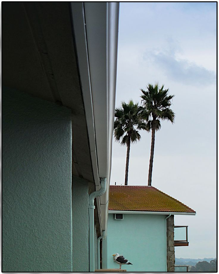 Pismo Beach, CA – Heidi