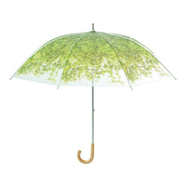 regenschirme grün wiesen frisch lustige durchsichtig