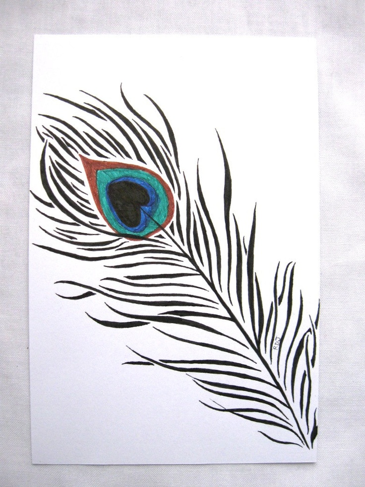 Black And White Peacock Feather Drawing   www.imgkid.com ...