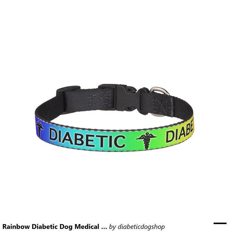 Diy Medical Dog Collar
