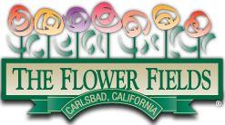 The Flower Fields® | Carlsbad, CA