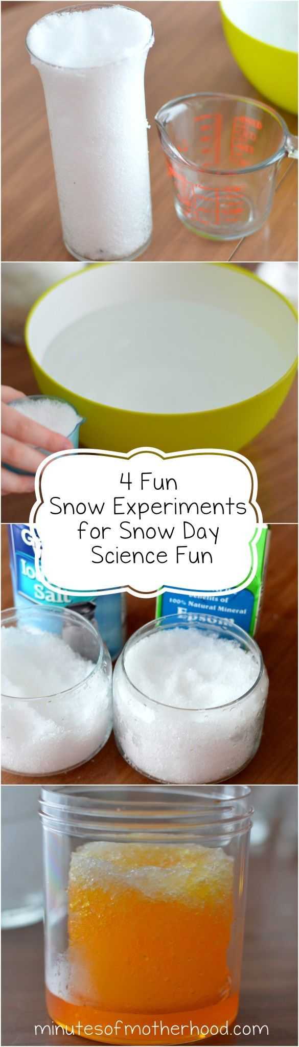 Four fun and simple snow science projects! Perfect activity for the whole family on a cold day!