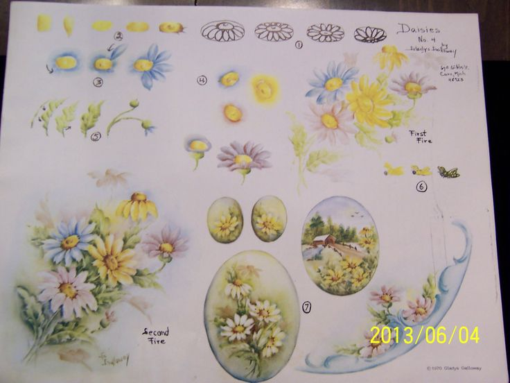China Painting Study 4 Daisies Step by Step Gladys Galloway 5 Pages | eBay