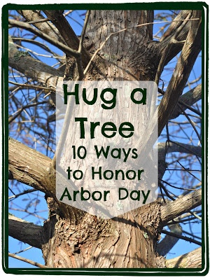 10 Simple Ways to Honor Arbor Day (and trees) from A Natural Nester