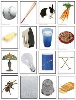 Things That Go Together-Photo Learning Cards; 48 Card Set; no. KE-845018 by Carson Dellosa. $11.99. (48) 4.25 inch x 5.5 inch cards featuring pairs of photographs of things that go together. Excellent for sorting and classifying. Great for developing memory, observation skills, plus expressive and receptive language skills. Includes a resource guide and vocabulary lists in English, Spanish, and French. An important language development tool for early childhood. A w...