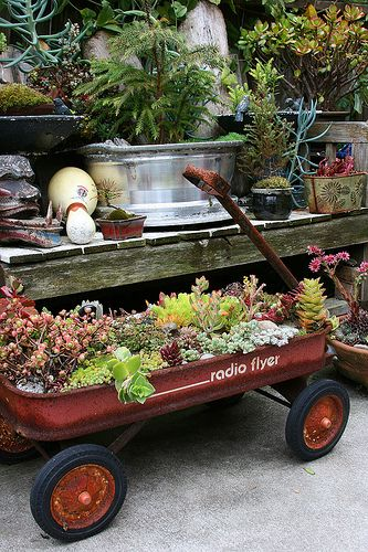 succulents in red wagon <3: Flowers Gardens, Idea, Little Gardens, Succulents Gardens, Wagon Planters, Little Red Wagon, Old Wagon, Flyers Wagon, Radios Flyers