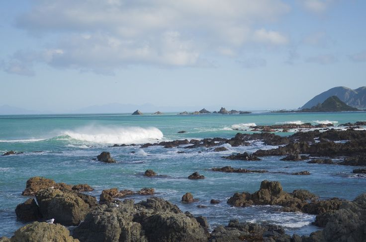 NZ_Along_the_coast - Eugeny Glazyrin - Веб-альбомы Picasa