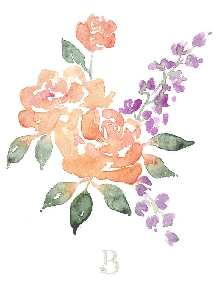 Loose Watercolor Flowers Peonies Watercolor Flowers