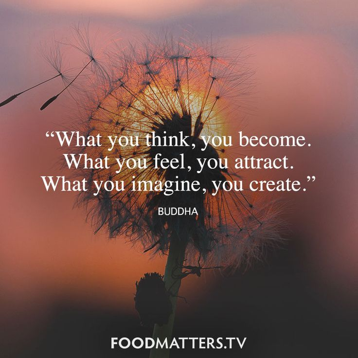 'What You Think, You Become. What You Feel, You Attract