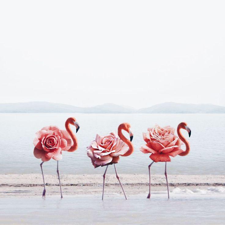 La jeune artiste Luisa Azevedo propose des créations bluffantes en fusionnant des objets et des images… Des images troublantes au style bien particulier ! Vous ne la connaissez sûrement pas, mais ses créations vous disent peut être quelque chose si vous naviguez souvent sur internet. Luisa Azevedoa18 ans et est portugaise. C'est à l'âge de …