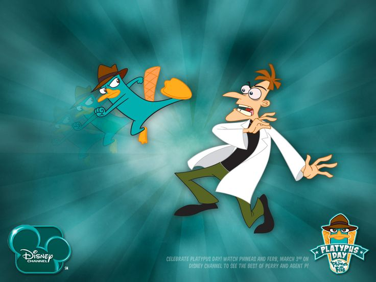 Perry the platypus wallpapers wallpaper hd wallpapers perry the platypus wallpapers wallpaper hd wallpapers pinterest latest hd wallpapers hd wallpaper and wallpaper free download voltagebd Images
