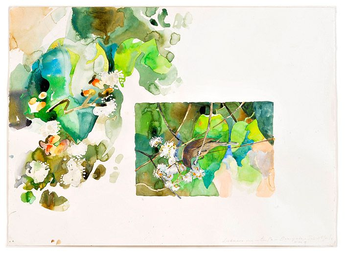 Lichmera indistincta - Baniyala   John Wolseley via roslyn oxley9 gallery