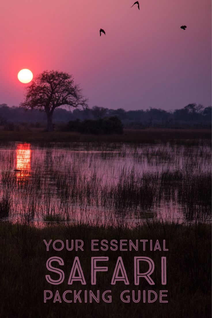 Going on Safari in South Africa? What about Tanzania, Kenya, or Botswana? Here is the ultimate packing guide!