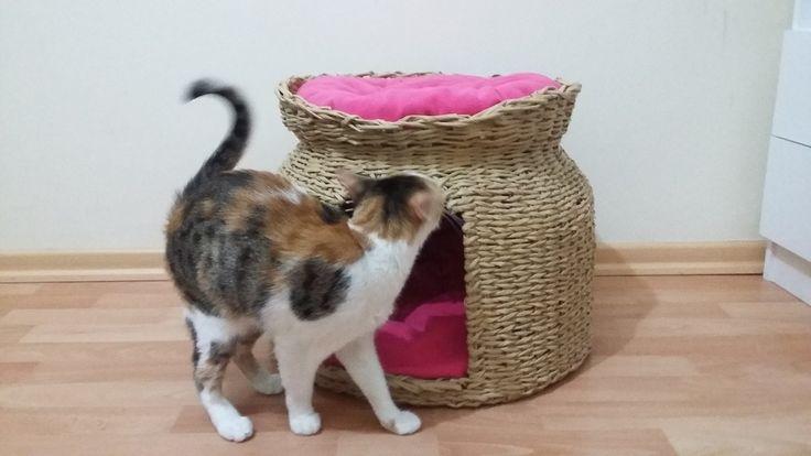 Gazeteden Hasır Kedi Evi Yapımı - Cat House - Geri Dönüşüm