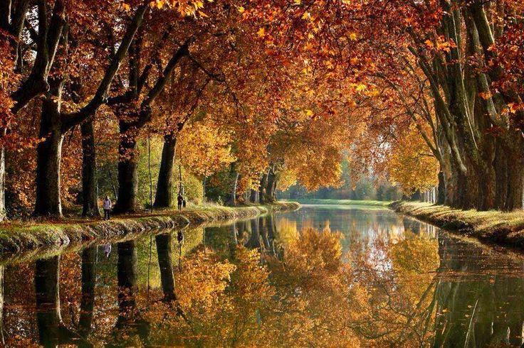 Fall Season Computer Wallpaper 12 Best La Provence En Automne Images On Pinterest