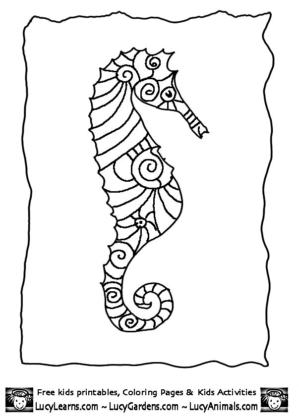 seahorse coloring page 8gif 603848 pixels for window painting - Realistic Seahorse Coloring Pages