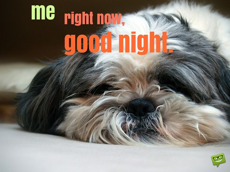 Me, right now, good night.