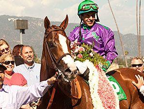 California Chrome - Kentucky Derby 2014 WINNER