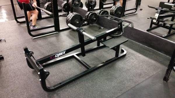 Cybex T Bar Row A E S Fitness T Bar Row Fitness Depot Best Pull Up Bar