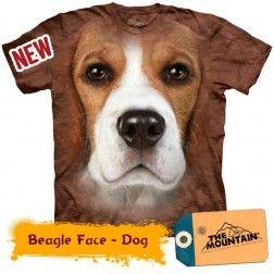 Beagle Face Dog