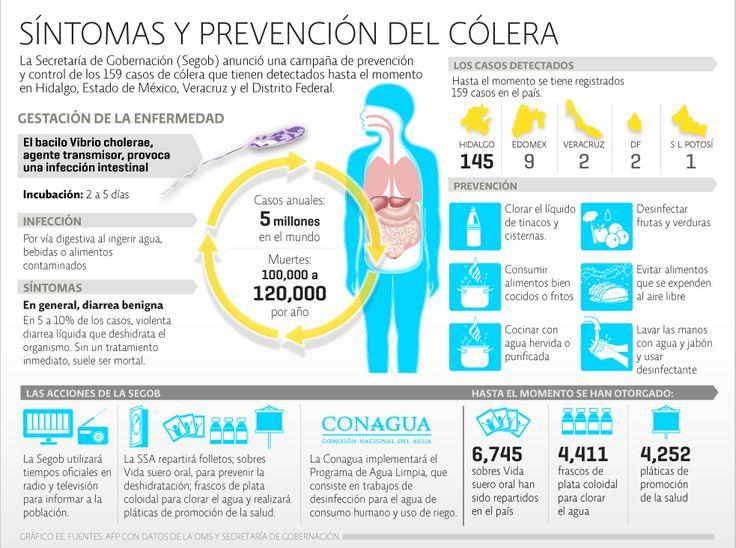 Información general del cólera