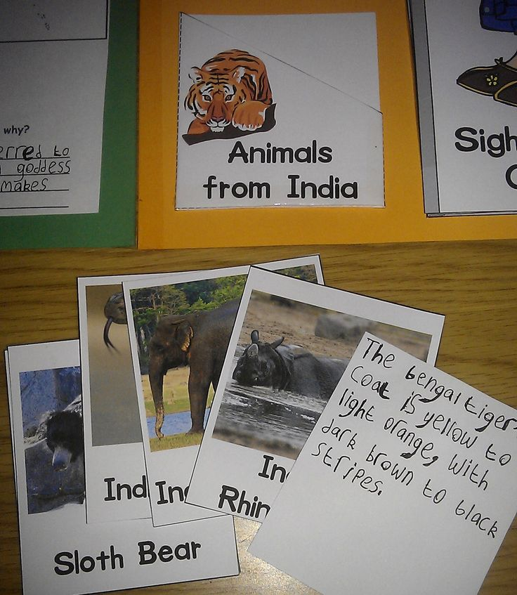 India Lapbook from Iman's Home-School